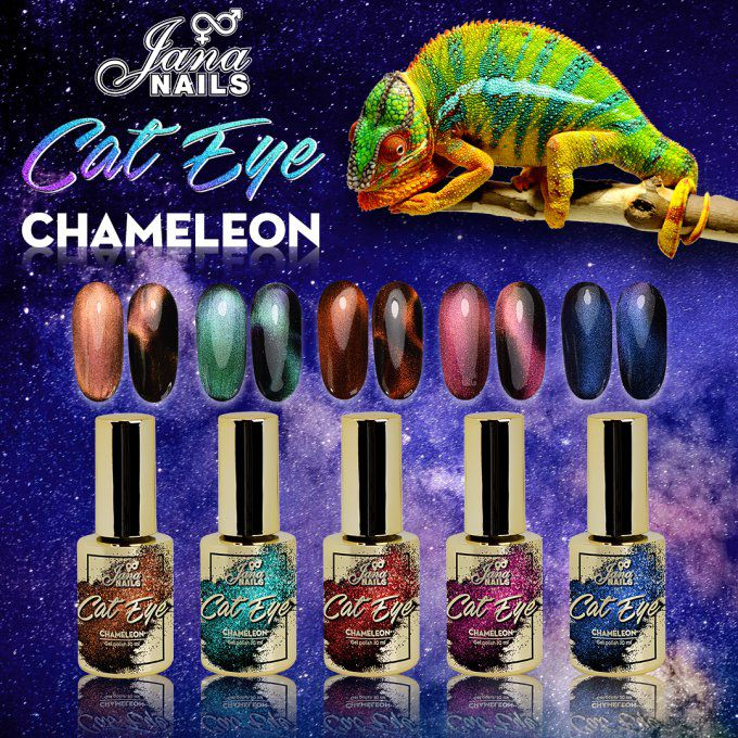 Cat eye chameleon N°3
